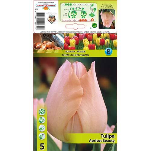 Лале Apricot Beauty изображение 1 артикул 67864