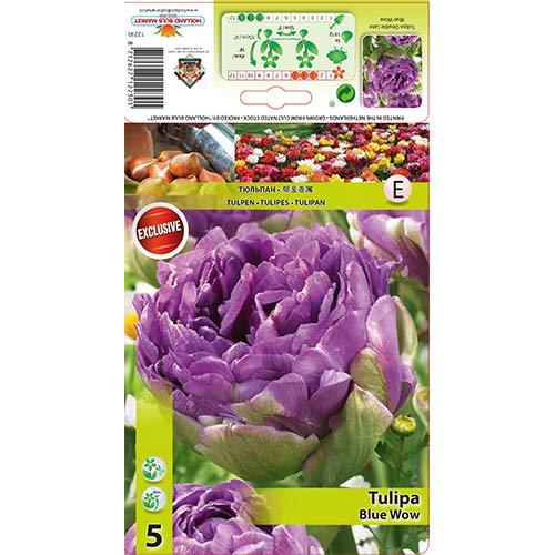Лале Blue Wow изображение 1 артикул 67701