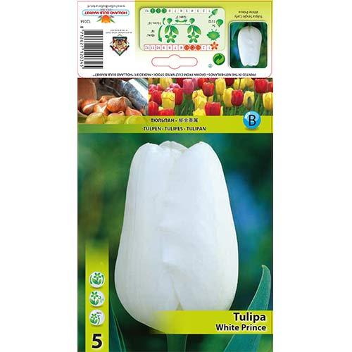 Лале White Prince изображение 1 артикул 67709
