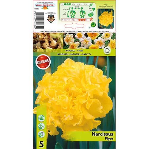 Нарцис Flyer изображение 1 артикул 67433