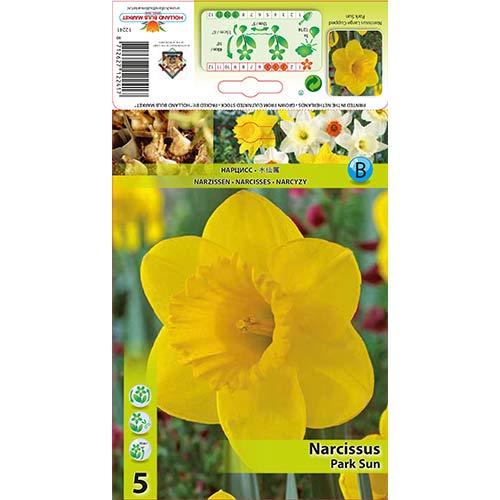Нарцис Park Sun изображение 1 артикул 67654
