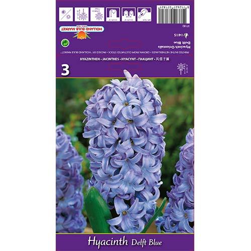 Зюмбюл Delft Blue изображение 1 артикул 67359