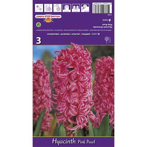 Зюмбюл Pink Pearl изображение 1 артикул 67365